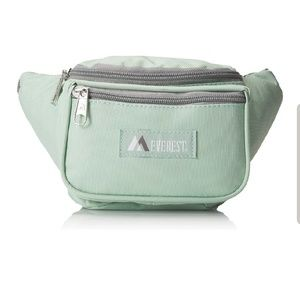 NWT Fannypack